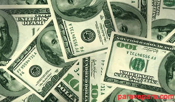 dolar nerden, dolar ismi nerden gelmektedir, dolar ne demek,amarika dolar