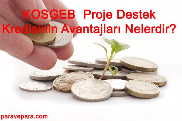 Ziraat Bankası İle KOSGEB Arasındaki Proje Destek Kredisinin Avantajları Nelerdir